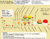 【MMD】カーネーションセット【モデル・アクセサリ配布】