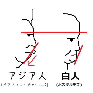 白人と日本人の横顔