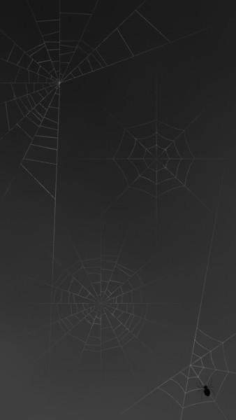 蜘蛛の巣_ver1.2