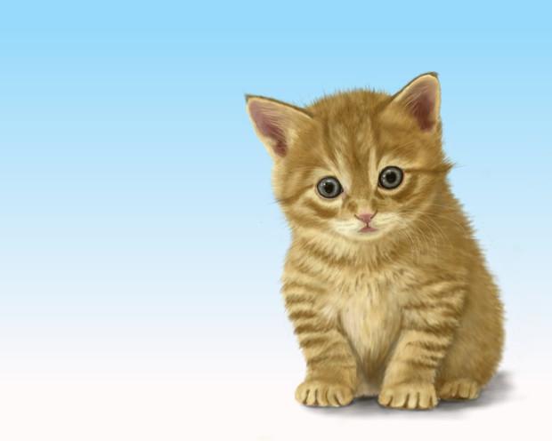 Firealpacaで子猫を描いてみたお絵かき練習 粘土人 さんのイラスト