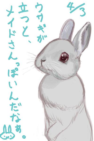 【練習】ウサギが立つと、メイドさんっぽいんだなぁ