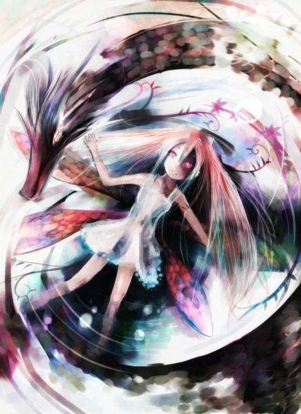 龍姫の1日