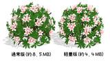 ツツジの花(pmx) 配布