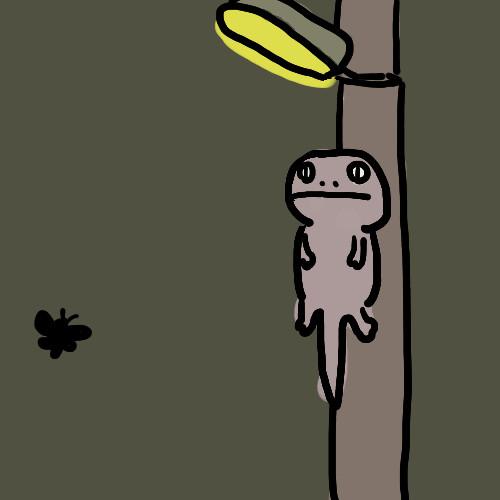 街灯で獲物を待つニホンヤモリ GIF