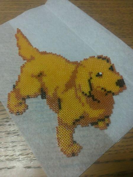 犬「ゴールデンレトリバー」:ミニハマビーズにて