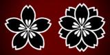 07_桜の床_ver1.1