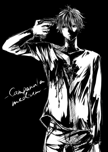 Campanula medium