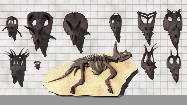 角竜骨格モデルVer2配布