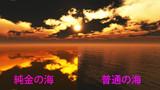 純金の海 C7