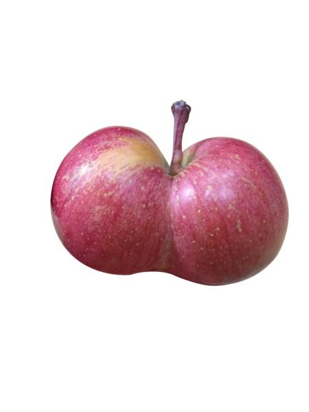 ふしぎなリンゴ発見( ≧Д≦)ノ.png