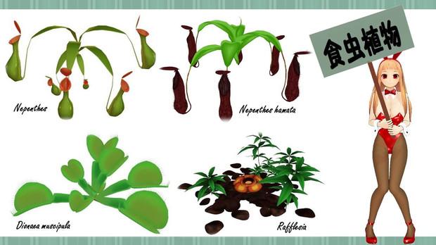 MMDの食虫植物