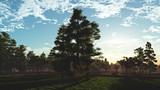 配布終了 朝の公園 H3
