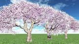 再配布【MMDアクセサリ配布】桜の木みたいな L4_Ver1.3