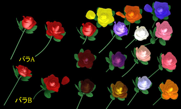 くわえるバラ  配布