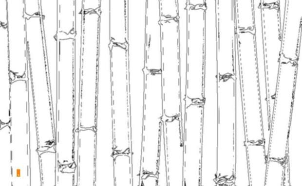 竹のある風景 27