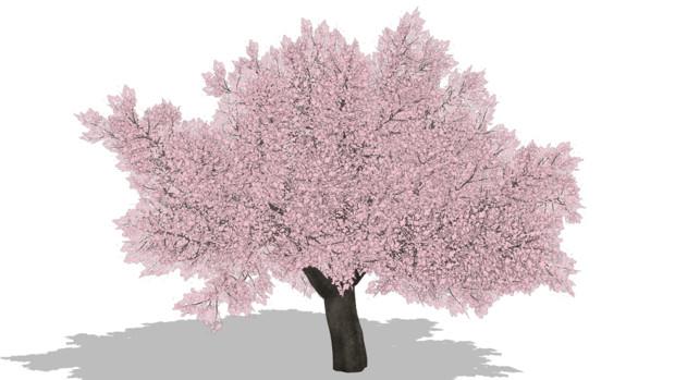 桜の木太 31040 さんのイラスト ニコニコ静画 イラスト