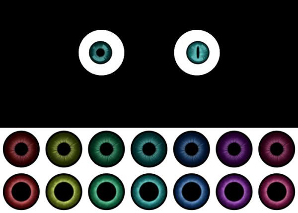 眼球(グロ注意)