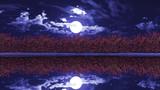 【MMDステージ配布】夜の薔薇 W8【スカイドーム】