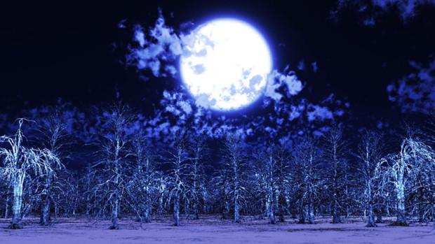 【MMDステージ配布】夜の枯れ木 W9【スカイドーム】