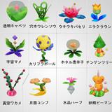 【アストロノーカ】A科全野菜セットver1.0