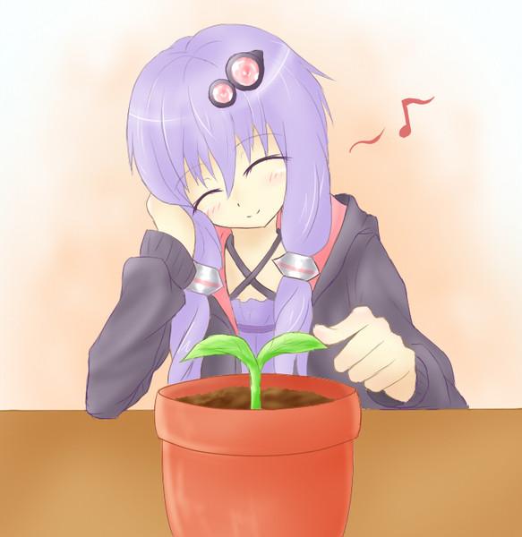 お花を育てるゆかりさん