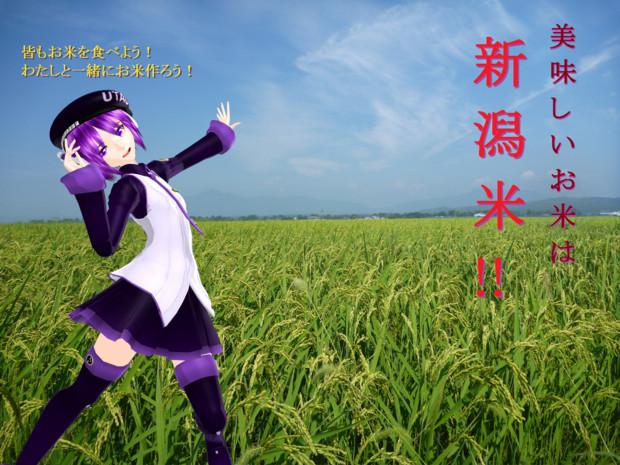 【ご当地静画】新潟の米食べれ!byカイ式唄音ウタ