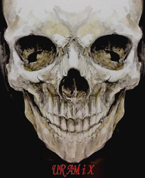 ダイソーの絵の具で描いてみた頭蓋骨