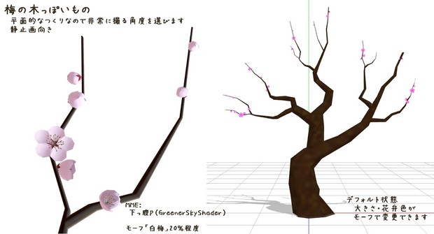 梅の木、配布します。