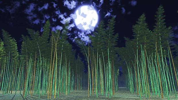 【MMDステージ配布】夜の竹林 AA9【スカイドーム】