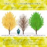 【配布終了・使用禁止】山田式遠景用銀杏の木配布(ローポリ16頂点)