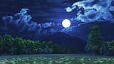 【MMDステージ配布】夜の森 DD6【スカイドーム】