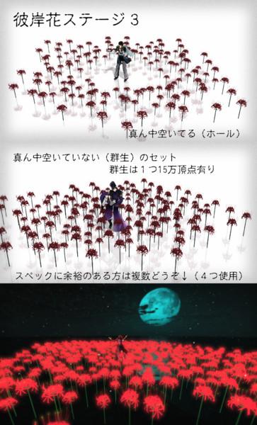 彼岸花ステージ3