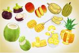南国果物セットver1.0