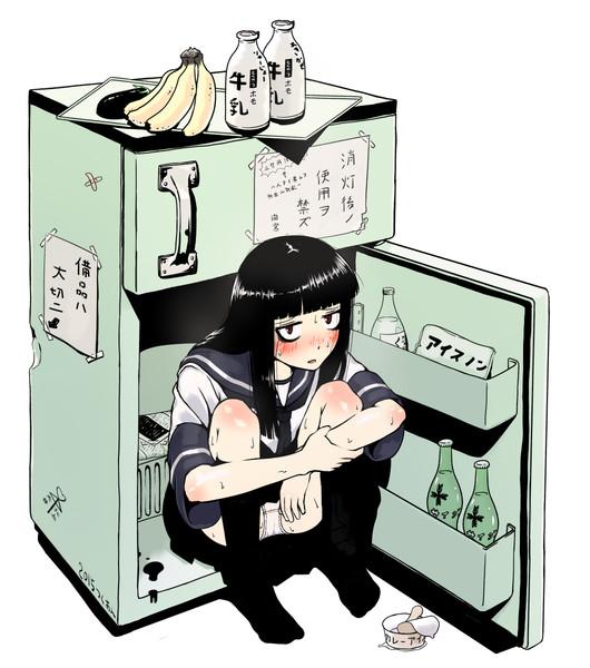 ひっきーインザ冷蔵庫