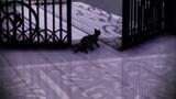 猫の歩行モーション