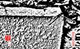 蜻蛉のいる風景 01