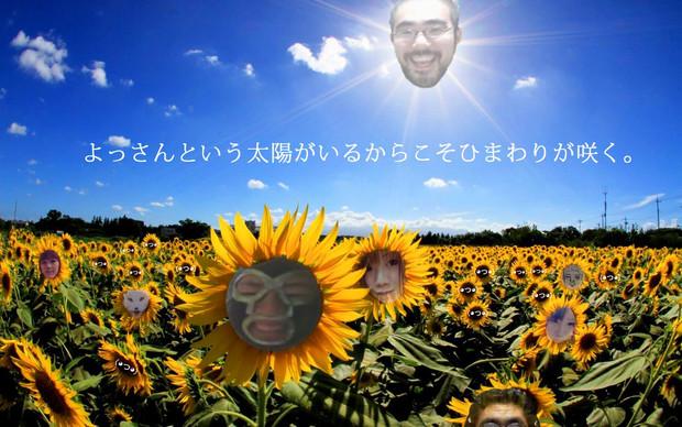よっさんという太陽がいるからこそひまわりが咲く