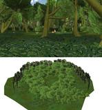 キノコのある森