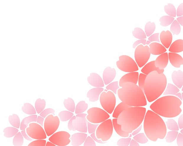 【素材】桜飾り