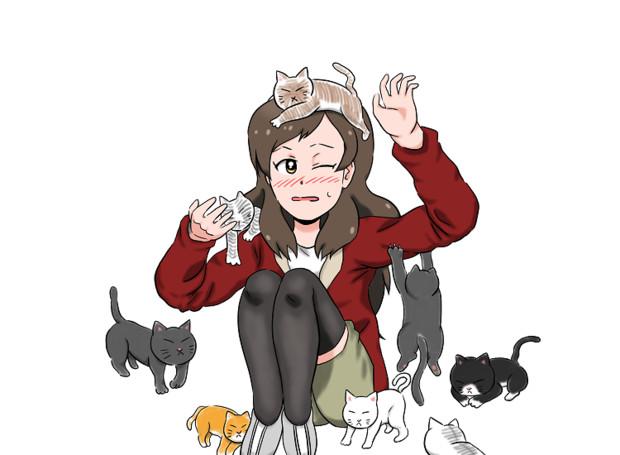 志保と触れ合う猫
