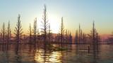【MMDステージ配布】湖面と枯木 MM8【スカイドーム】