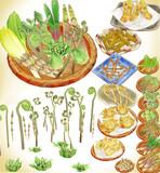 山菜セットver1.0