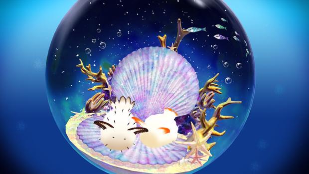 【MMD-OMF6】ゴマフビロードウミウシ・シロウサギウミウシ