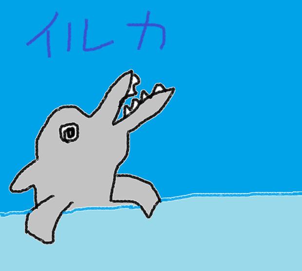 イルカ もも さんのイラスト ニコニコ静画 イラスト