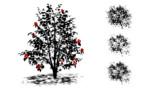 木漏れ日の影_ver1.1