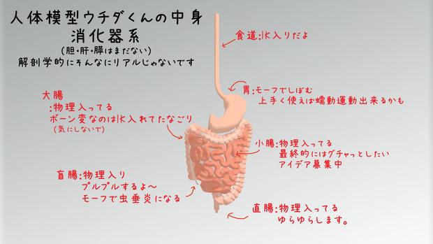 【グロ注意】MikuMikuDance用モデル「ウチダくん」お試し版
