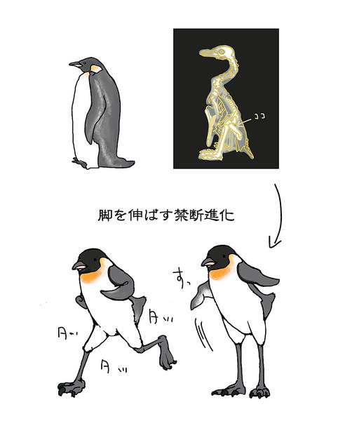 皇帝ペンギン温暖化対応型進化 サバ缶フィレ鮪 さんのイラスト