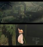 魔女の森にて