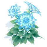 【配布】青い花