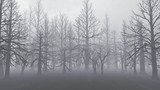 【MMDステージ配布】霧の枯木の森 TL3【スカイドーム】